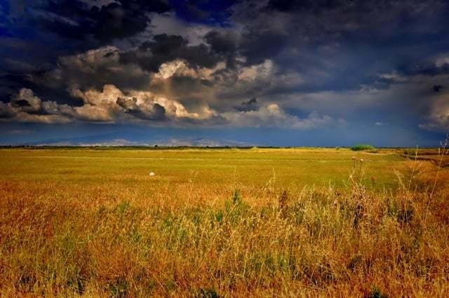 boş arazi