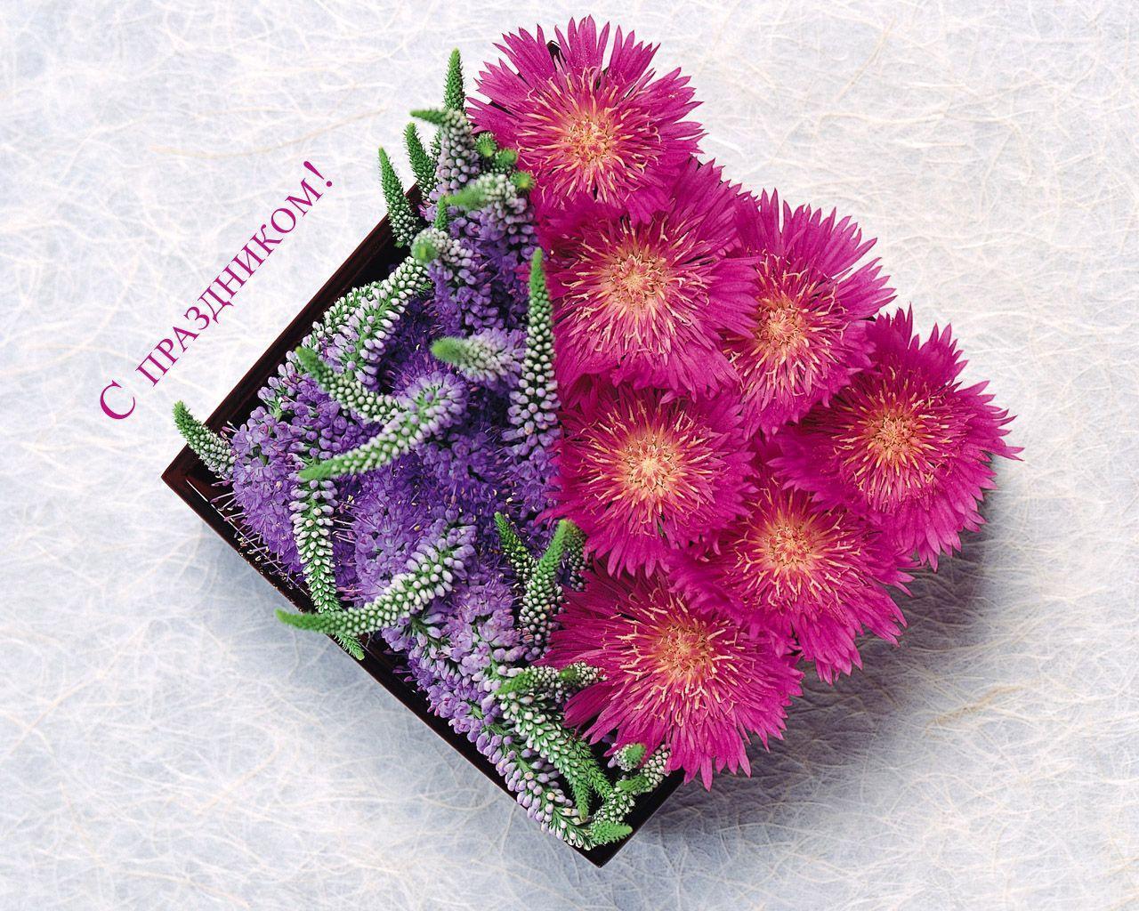 Çiçek tanzimleri-1