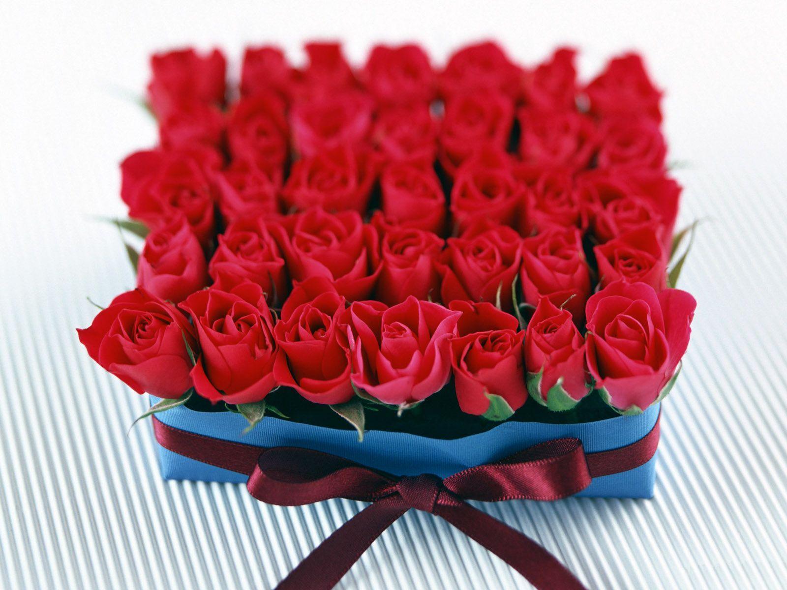 Çiçek tanzimleri-3