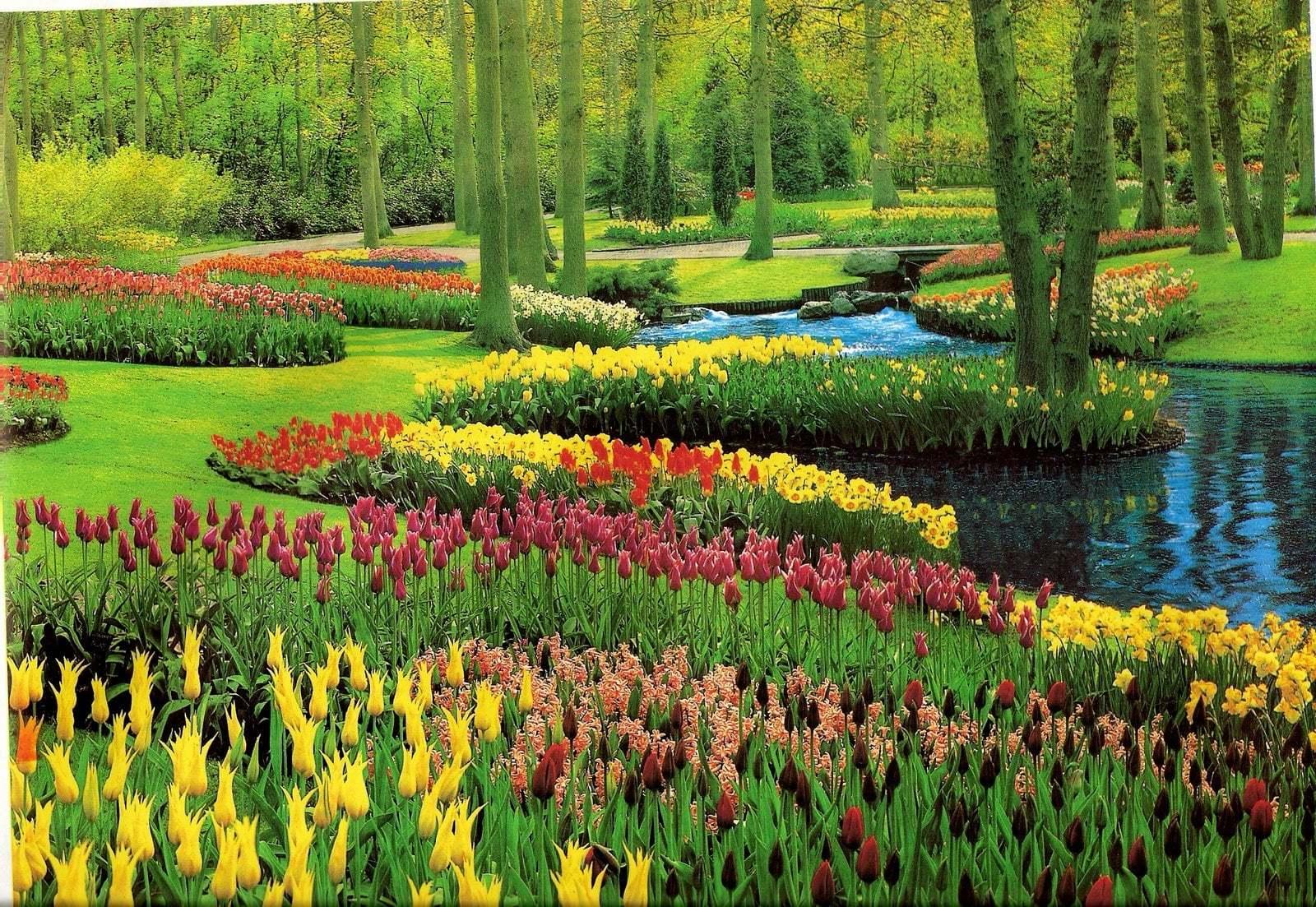 Çiçekli manzaralar-15