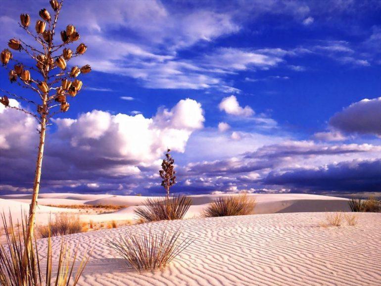 Çöl ve Gökyüzünün Maviliği