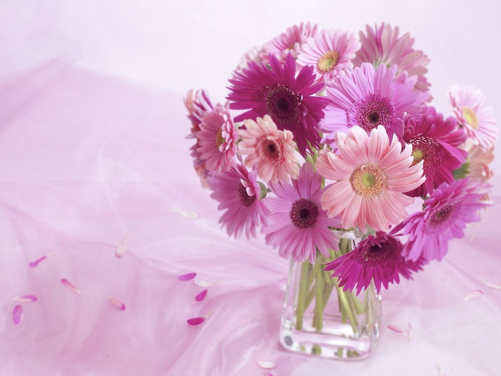 Dekoratif çiçekler-24