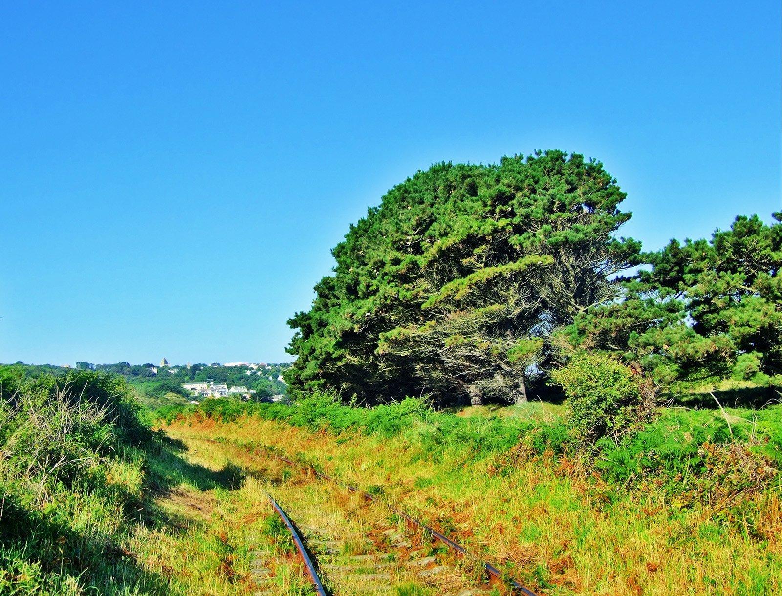 doğal tren yolu