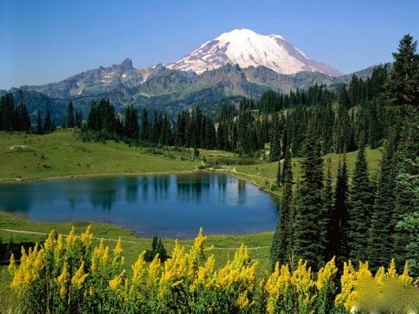 doğanın güzelliği