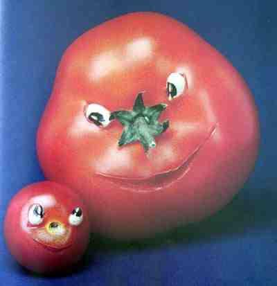 domates dünyası