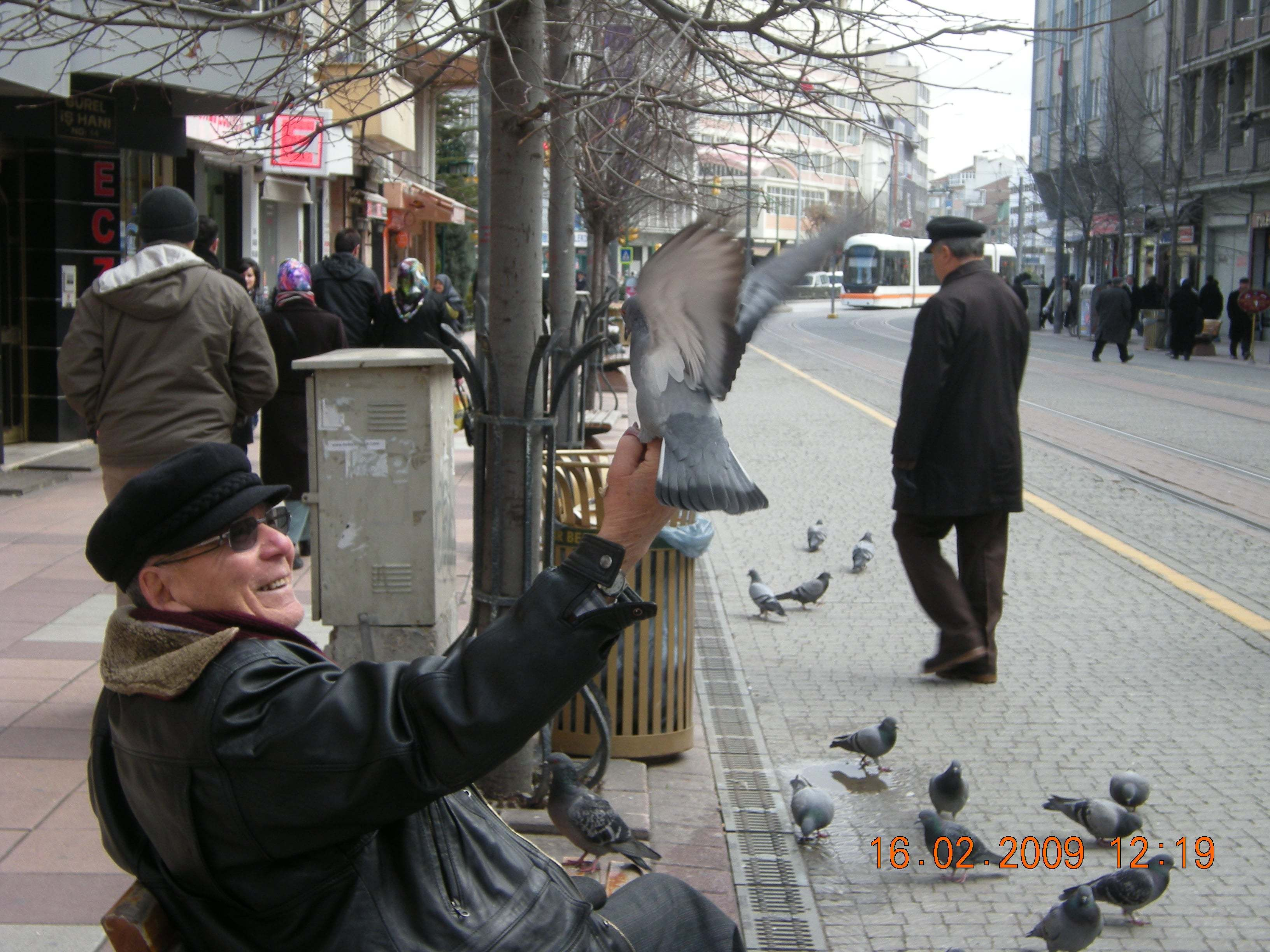 Güvercinlere Yem Veren Adam