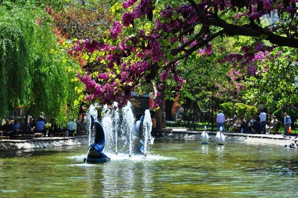 eskişehir süper park