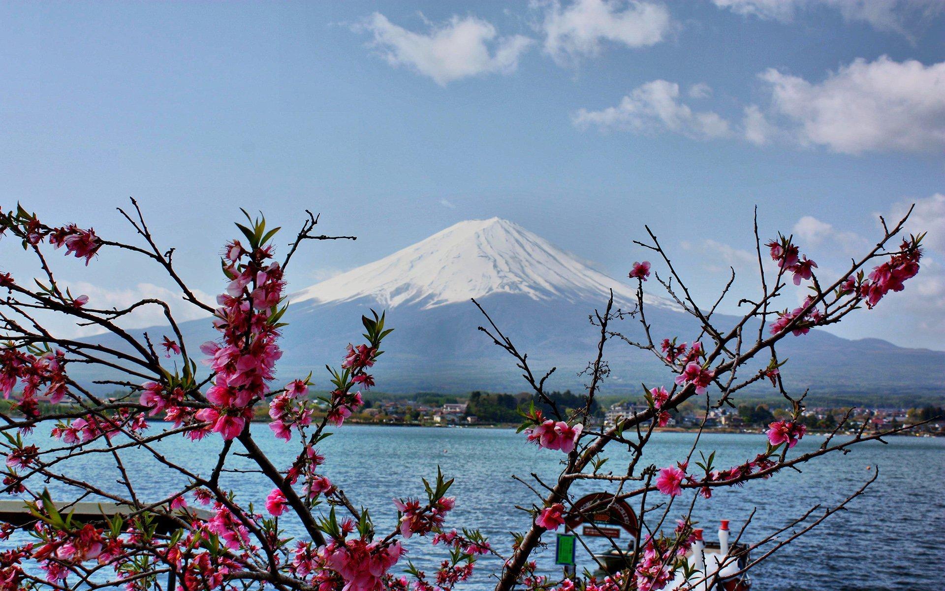 fuji dağı manzarası