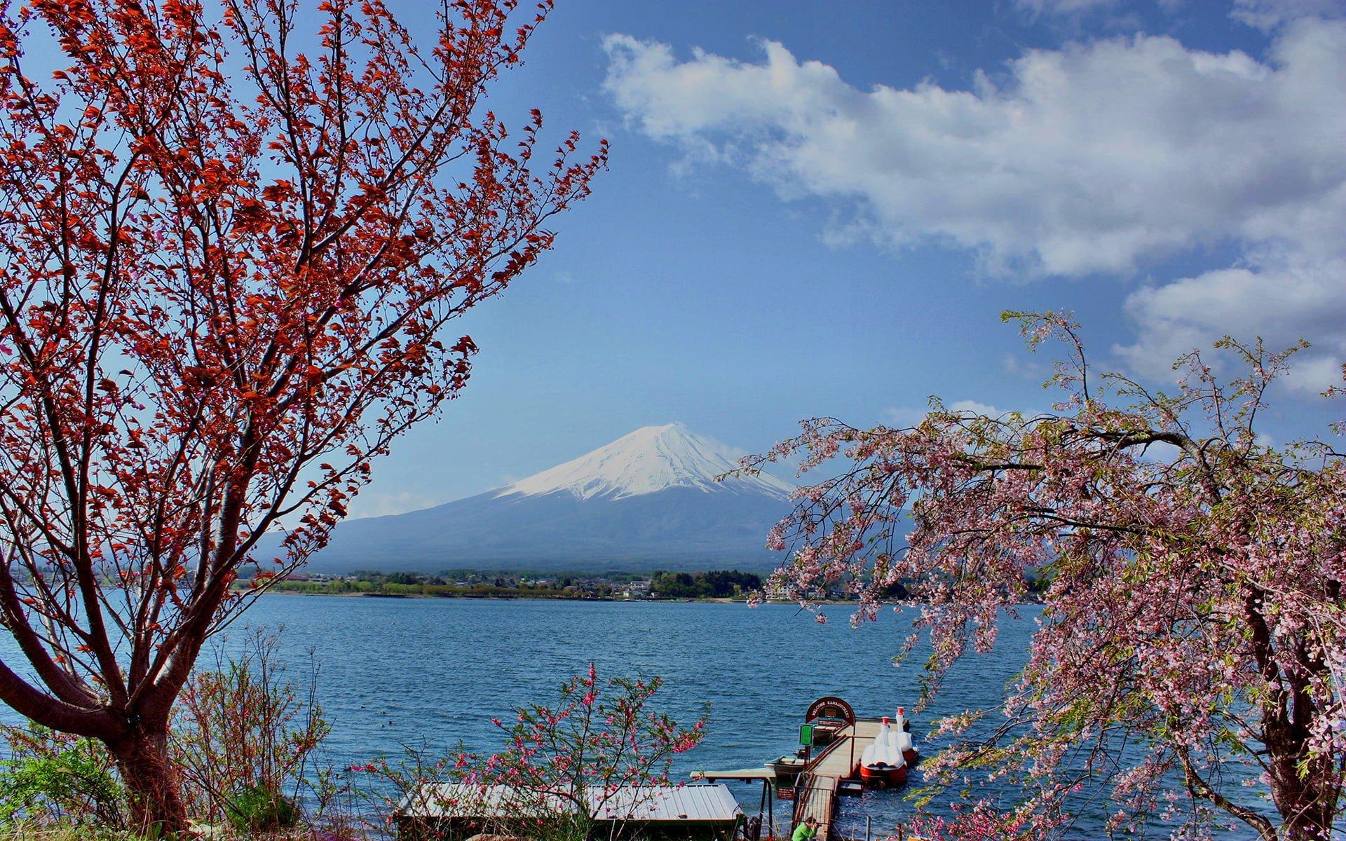 fuji dağı resmi