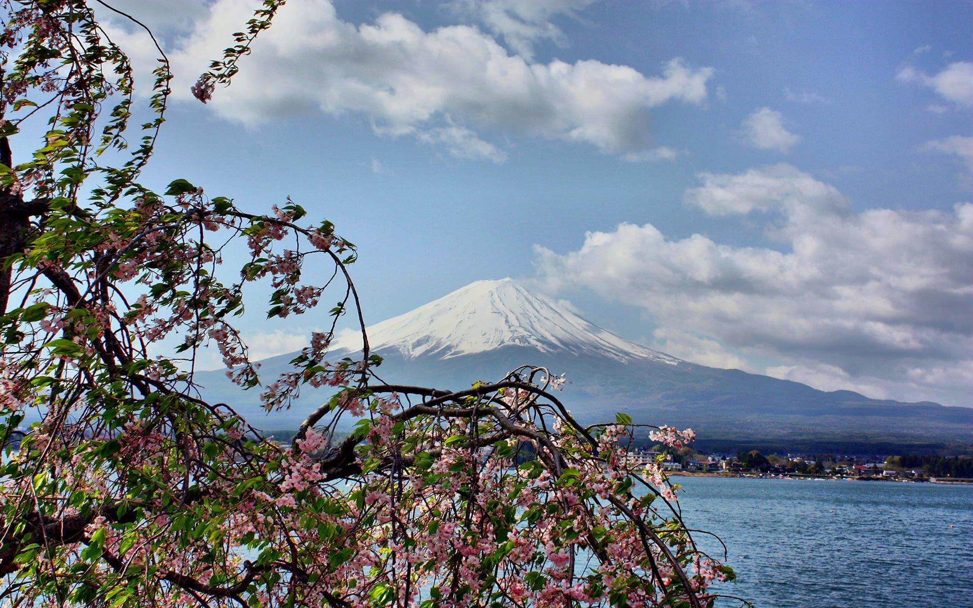 fujiyama dağı manzarası