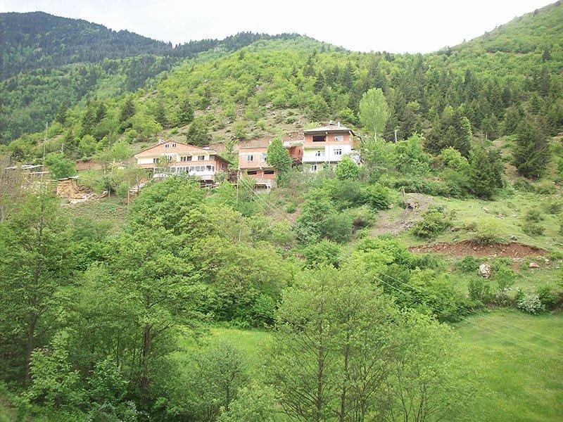 gümüşhane araköy köyü – evler