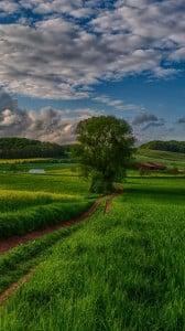 güzel doğa manzarası 1080x1920