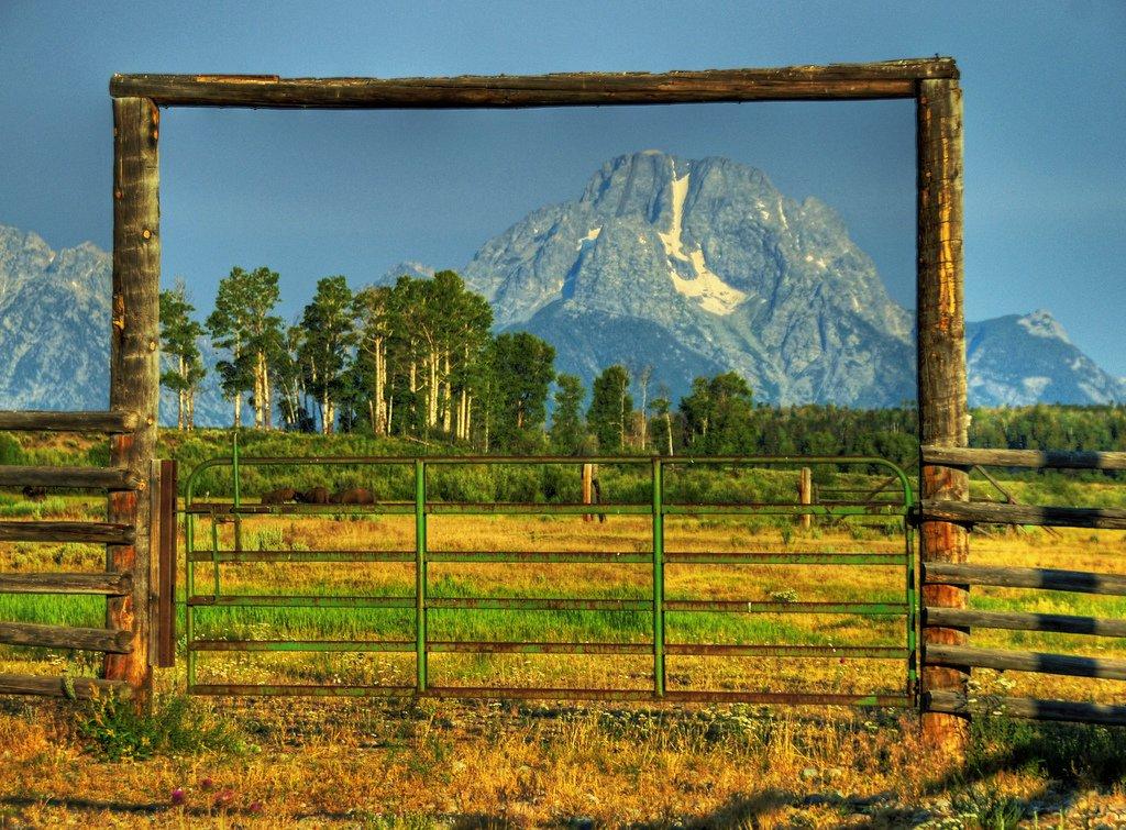 güzellik kapısı