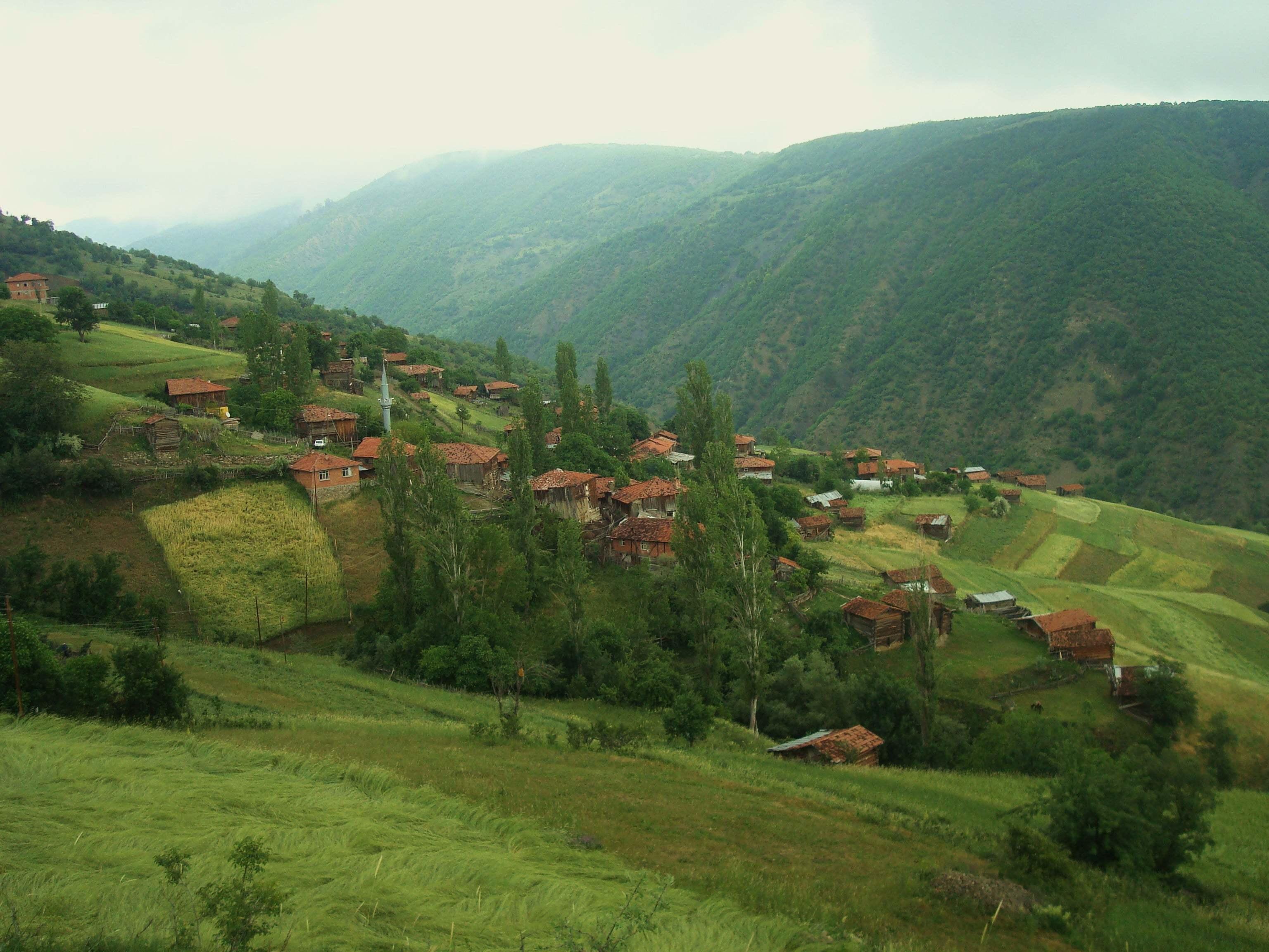 Gerişköy