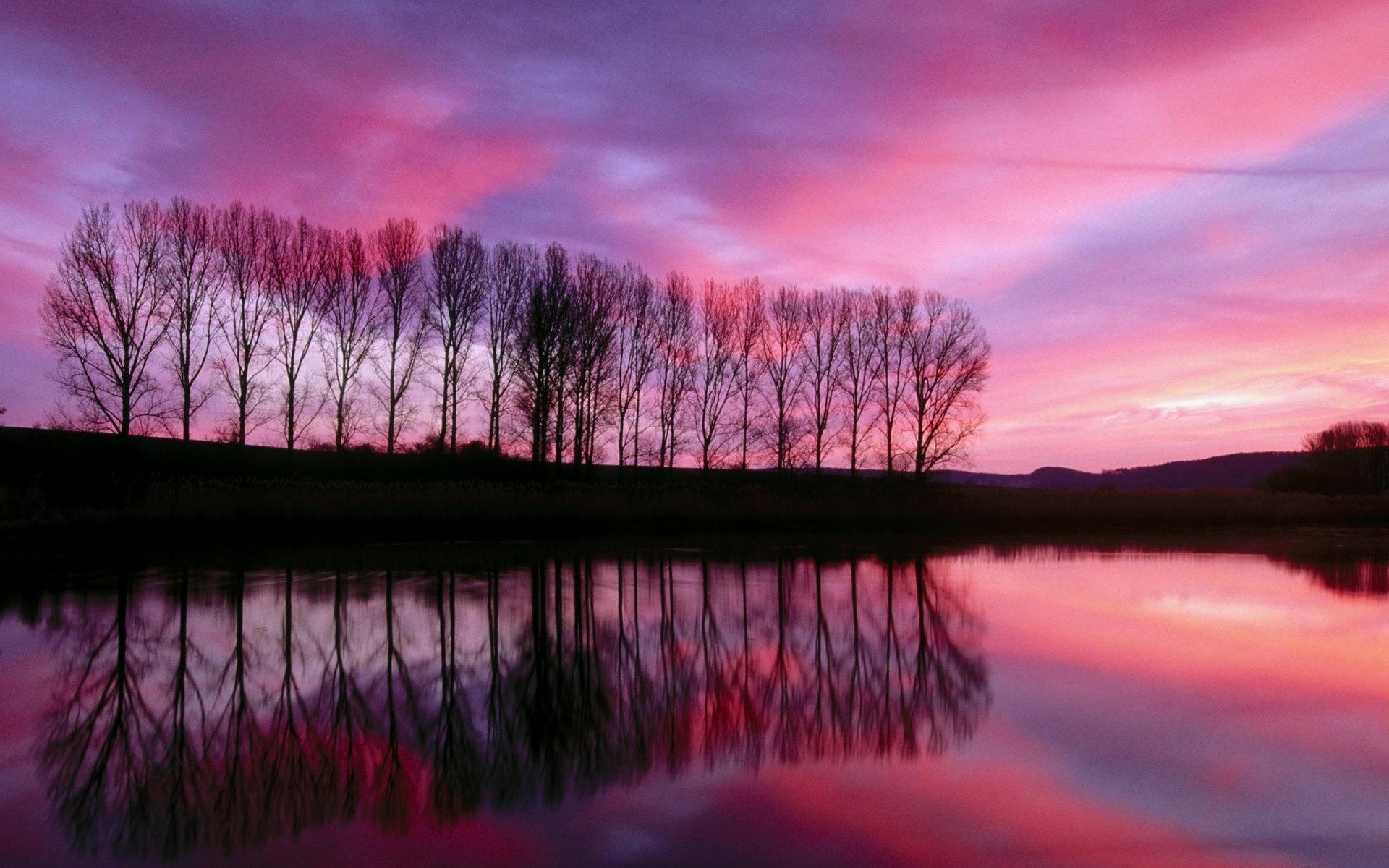 Günbatımında ağaçlar-1