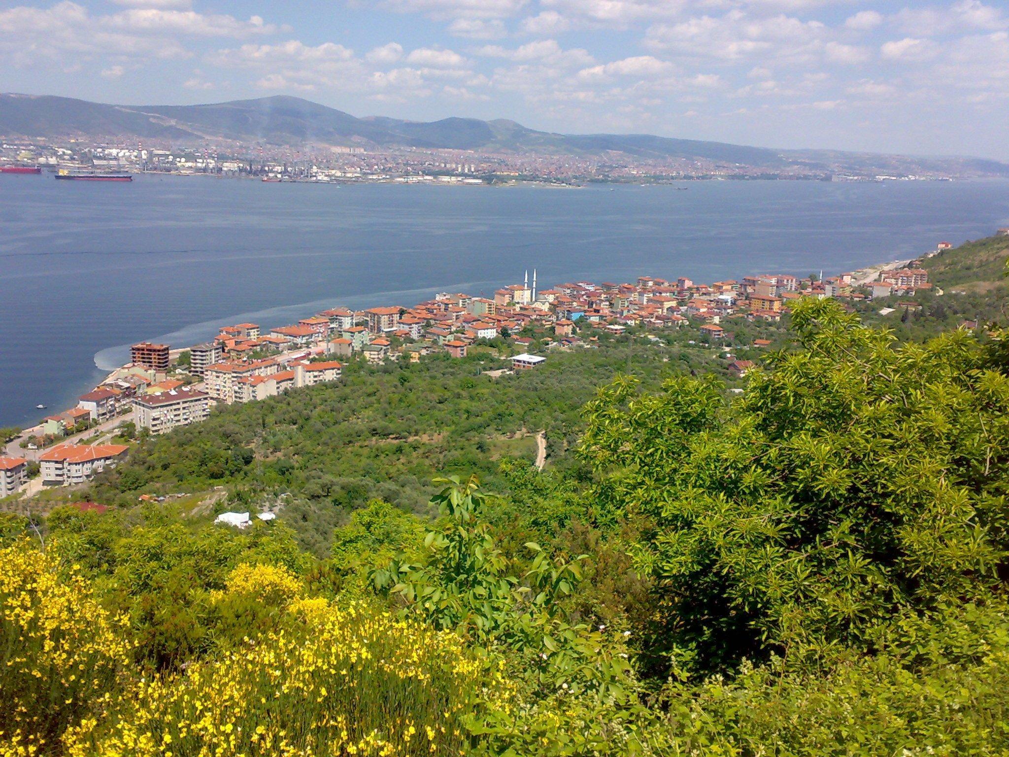 Halıdere