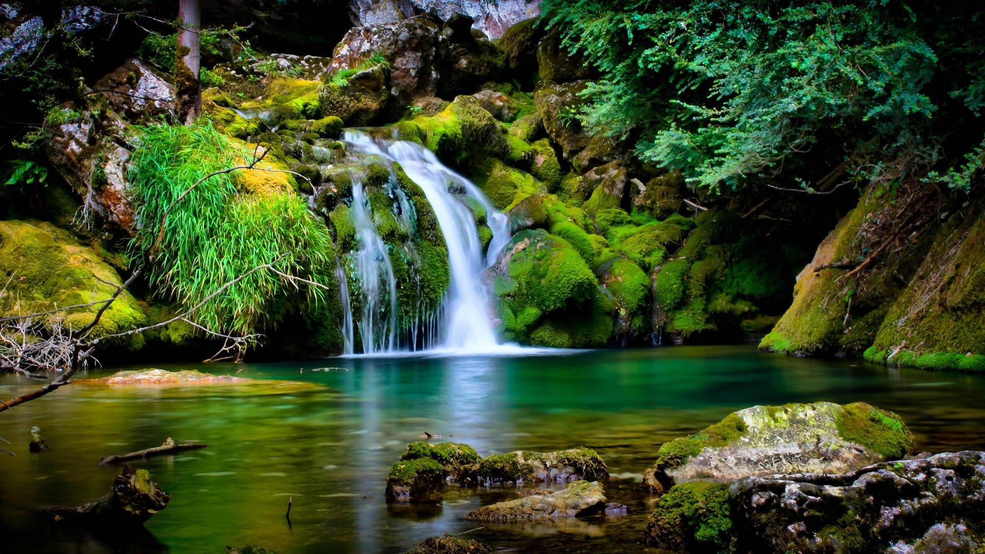HD Doğa Manzaraları