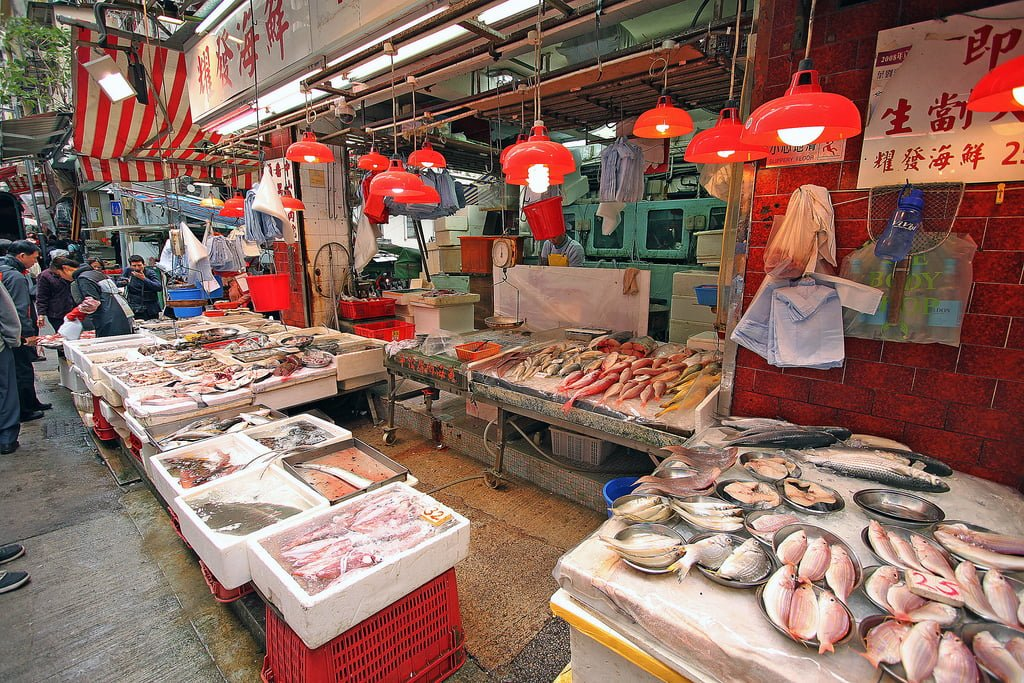 hong kong resimleri – 8