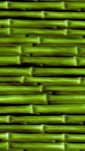 iPhone 5 Bambu Duvar Kağıdı 1