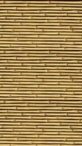 iPhone 5 Bambu Duvar Kağıdı 2