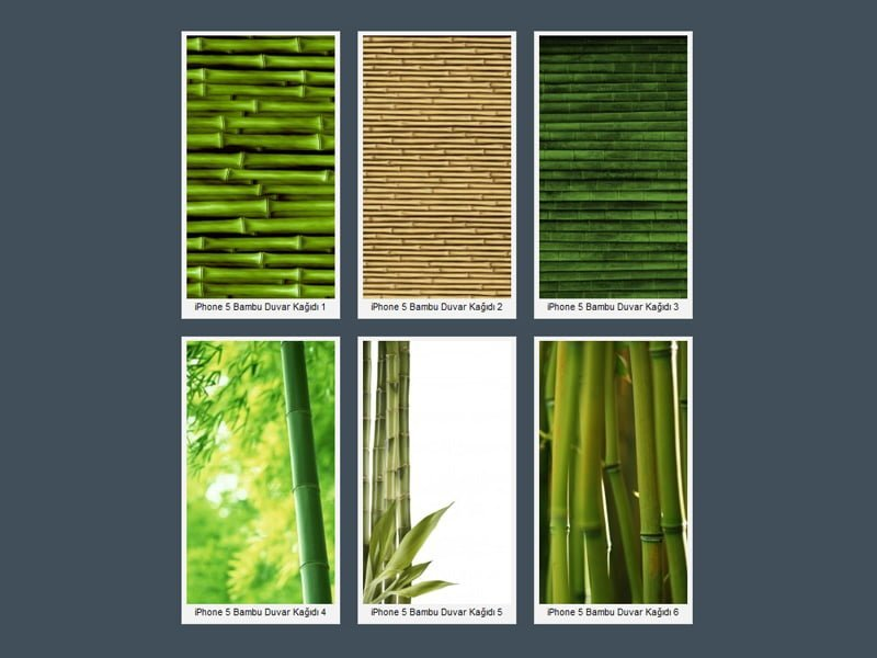 iPhone 5 Bambu Wallpaper