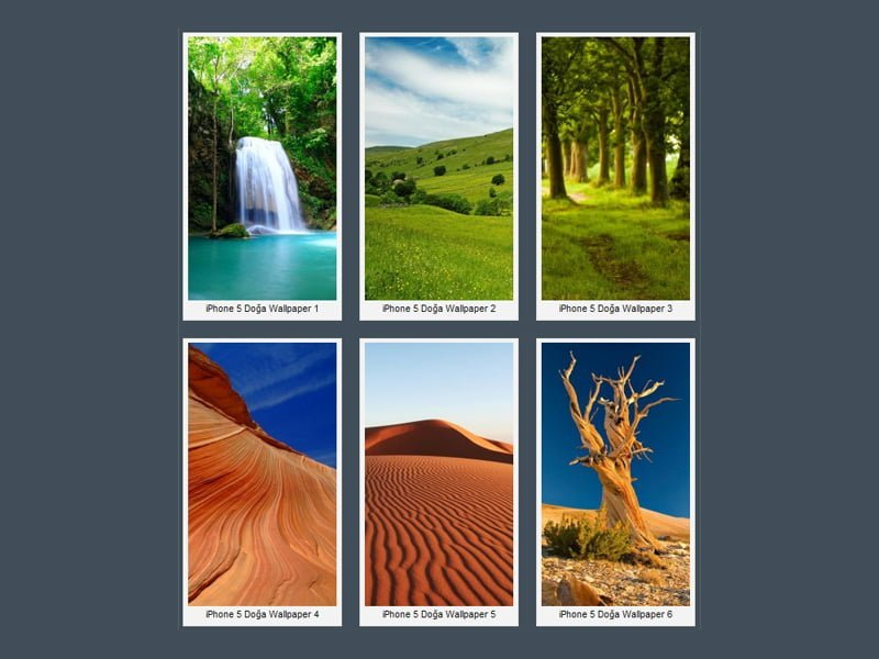 iPhone 5 Manzara Wallpaper
