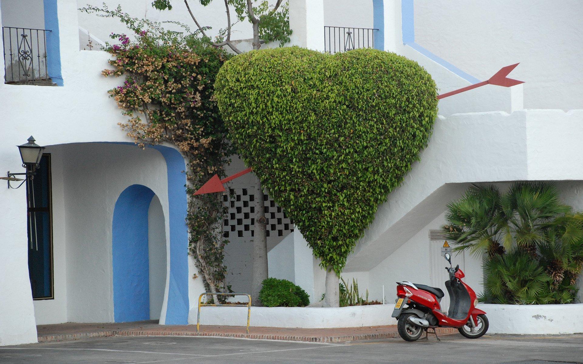 ispanya çiçekten kalp