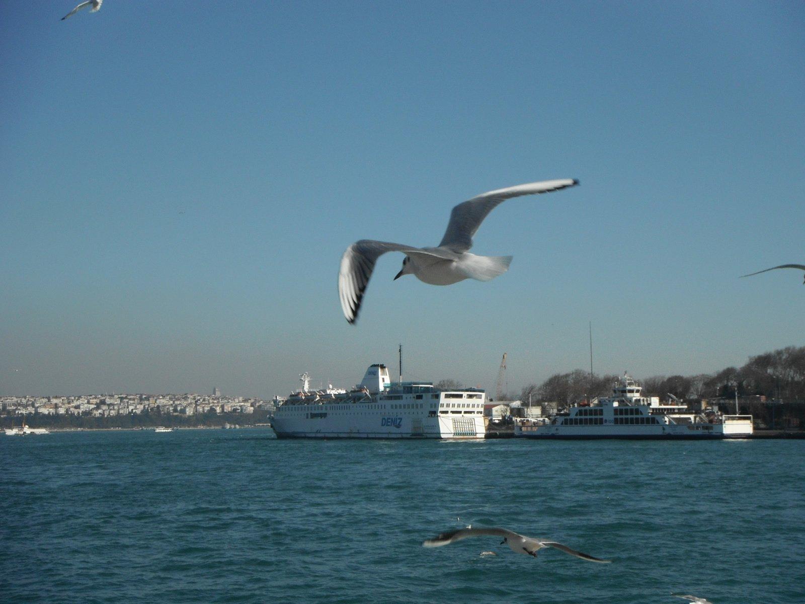 istanbul`dan bir masal