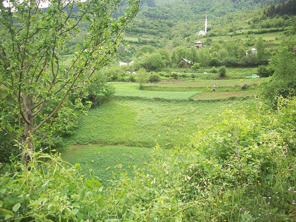 kürtün – araköy köyü