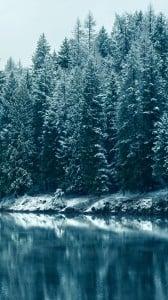 kışın ilk ışığı 1080x1920