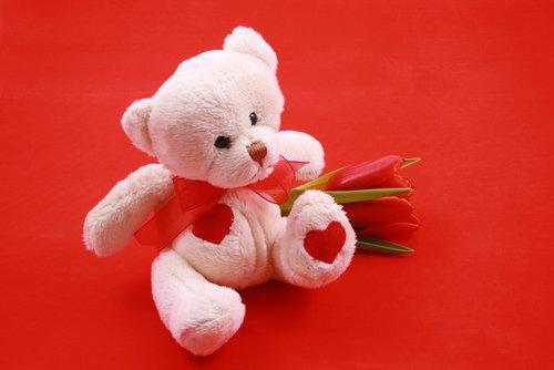 kırmızı güllü oyuncak ayı