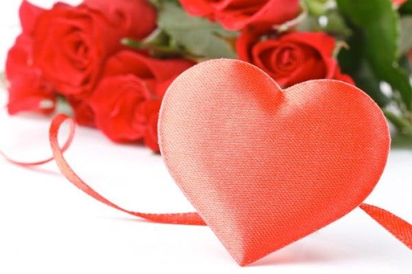 kırmızı kalp ve güller