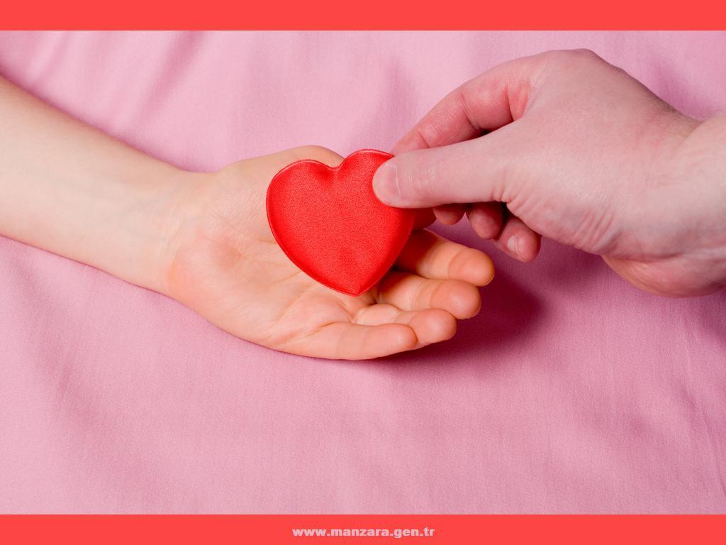 Kalpli duvar kağıtları-49