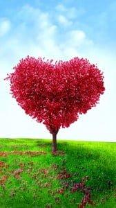 kalpten ağaç 1080x1920