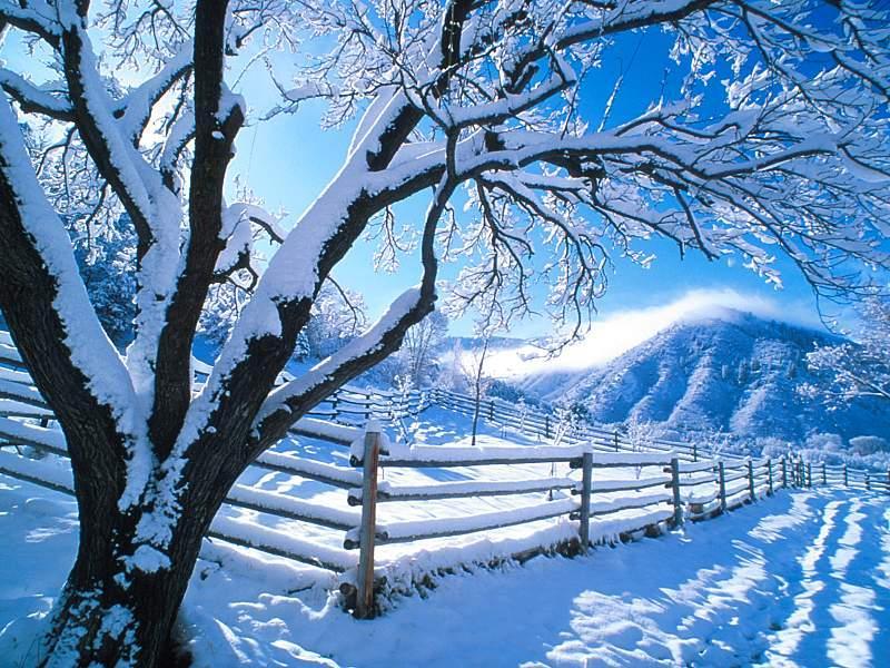 kar`ın güzelliği