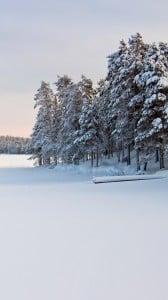 kar manzarası 1080x1920