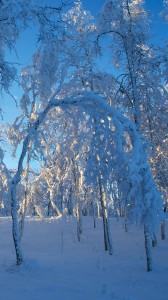 karlı gün batımı 1080x1920