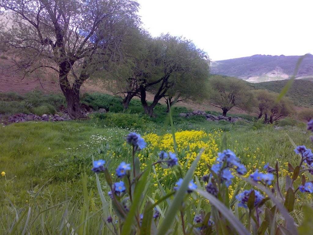 Doğa ve manzara