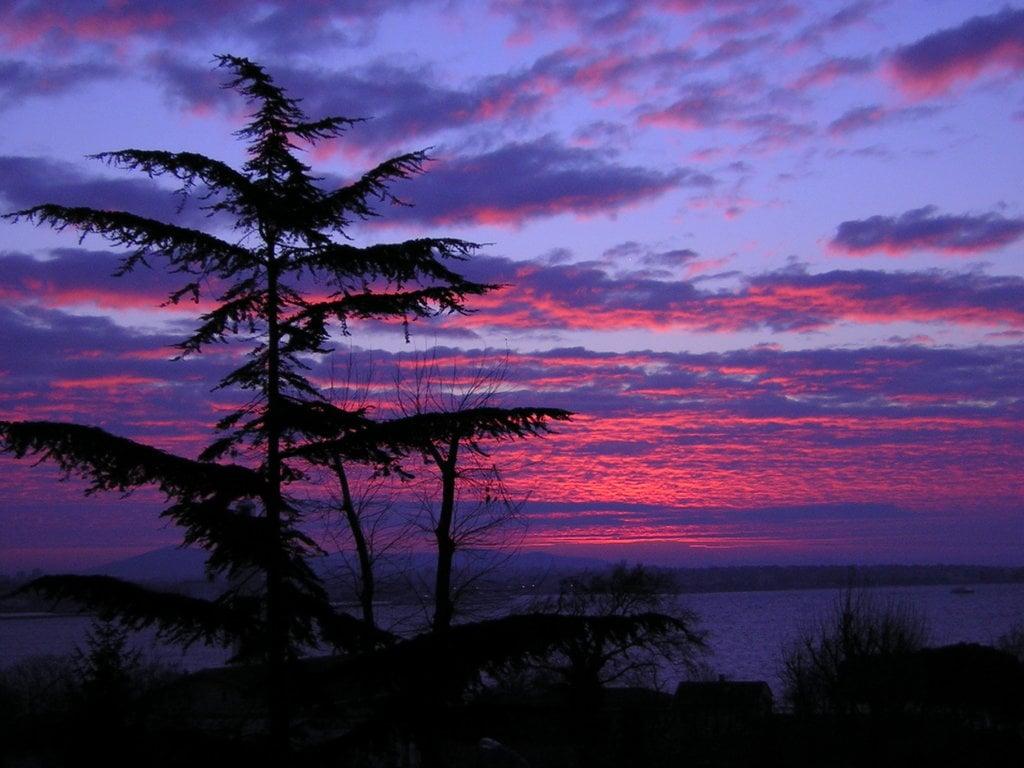 Lacivert Gökyüzü Manzarası