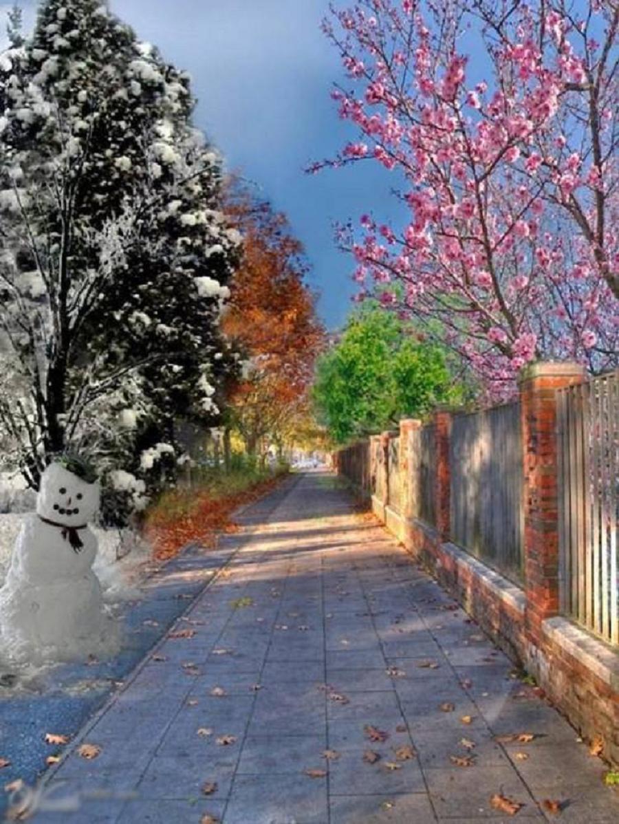 Dört Mevsim Manzarası