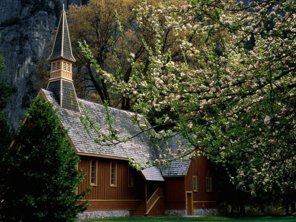 Ağaçlar Arasındaki Kilise