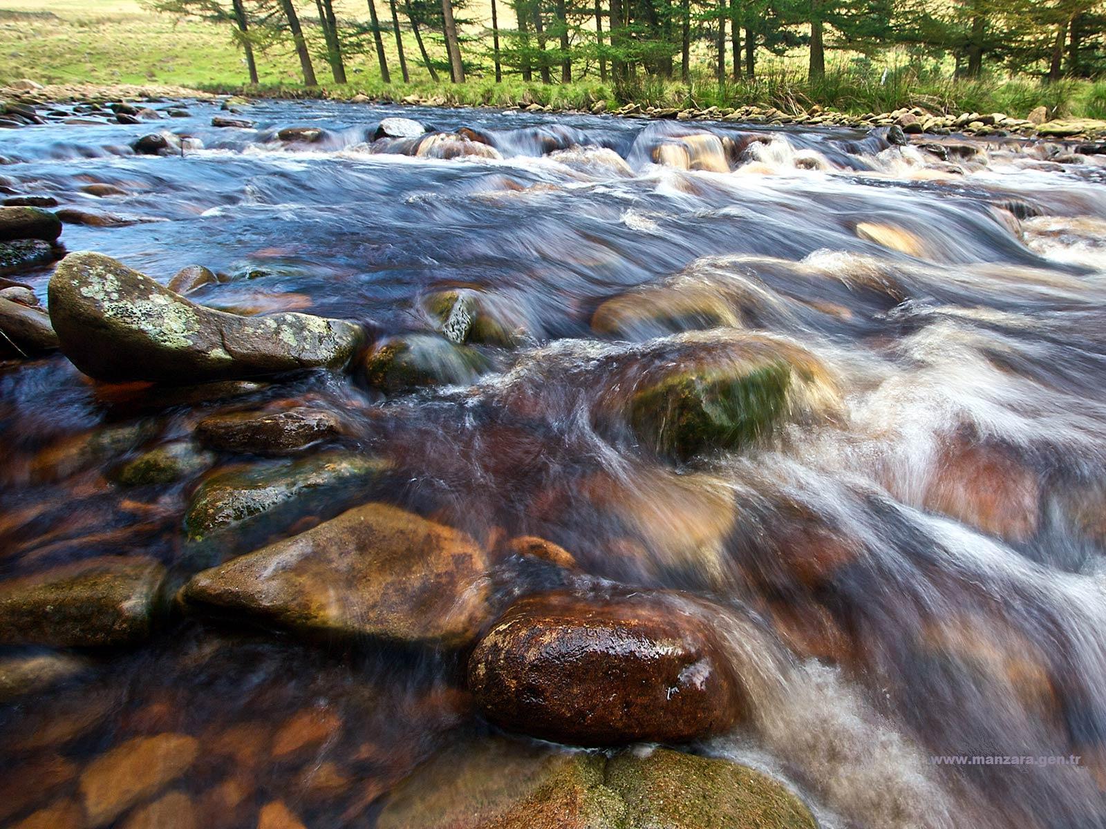 Taşlar ve Berrak Su Manzarası