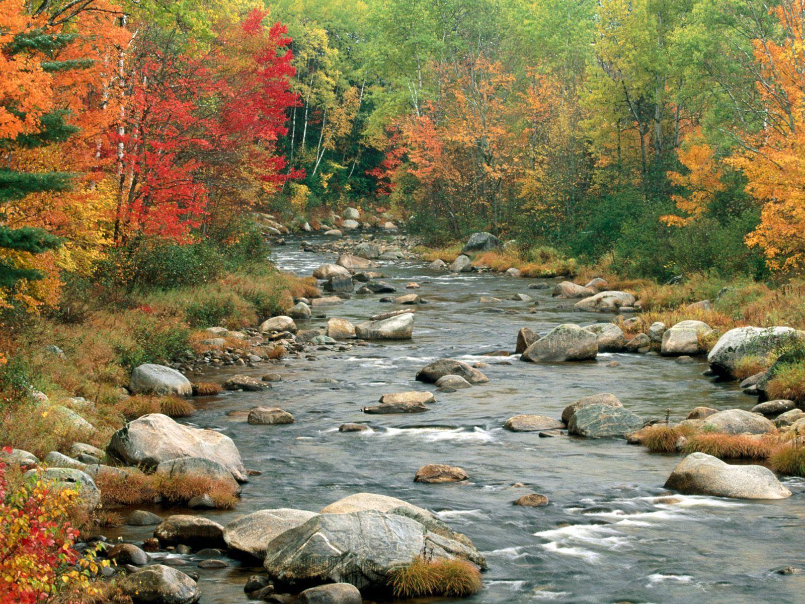 New Hampshire Eyaleti Manzarası