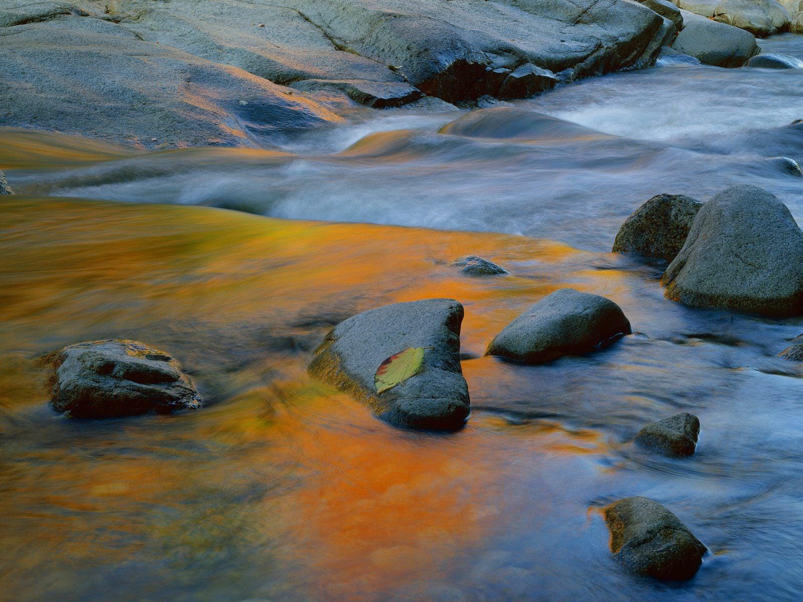 Suyun Renk Değişimi