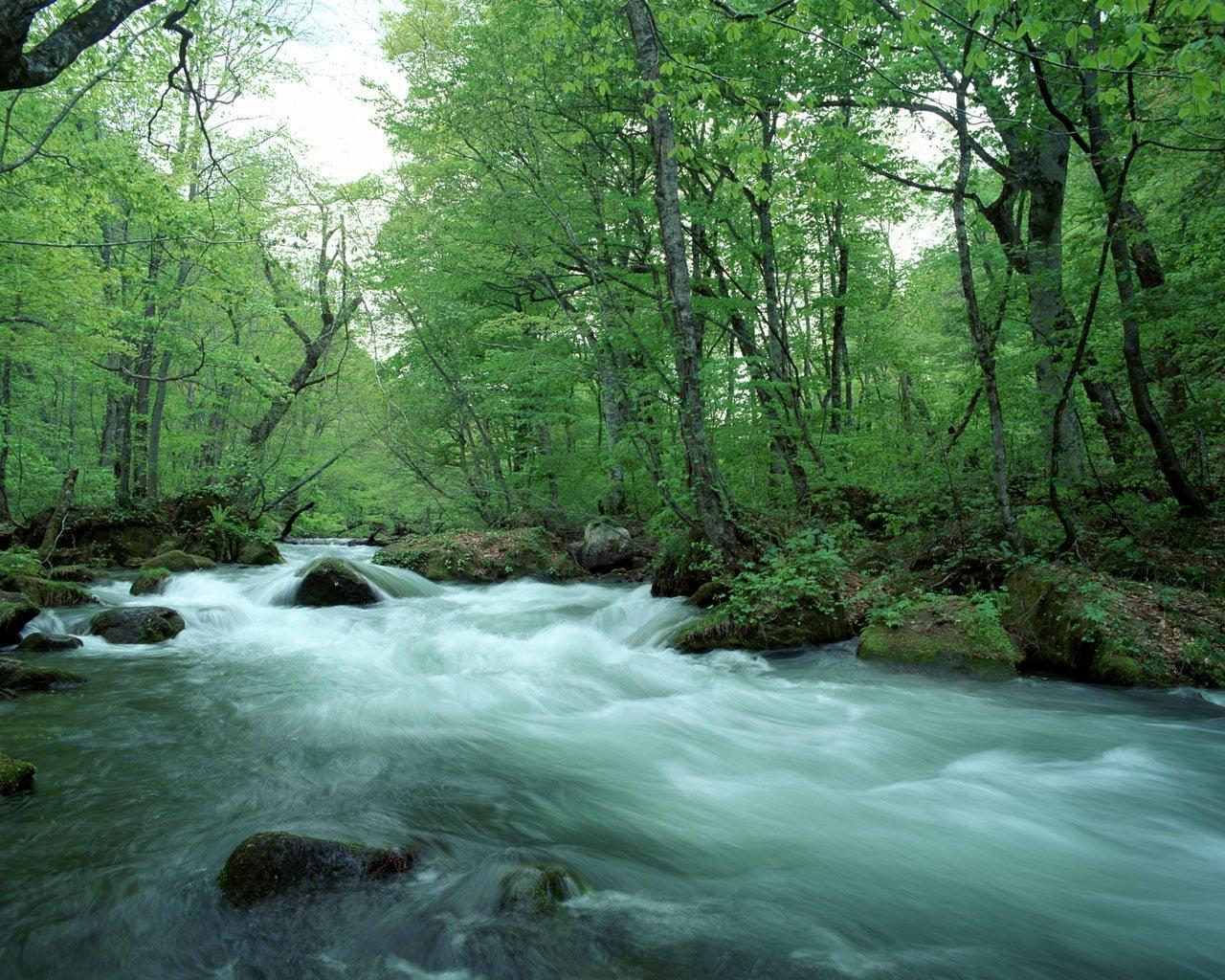 Akan Su Manzarası