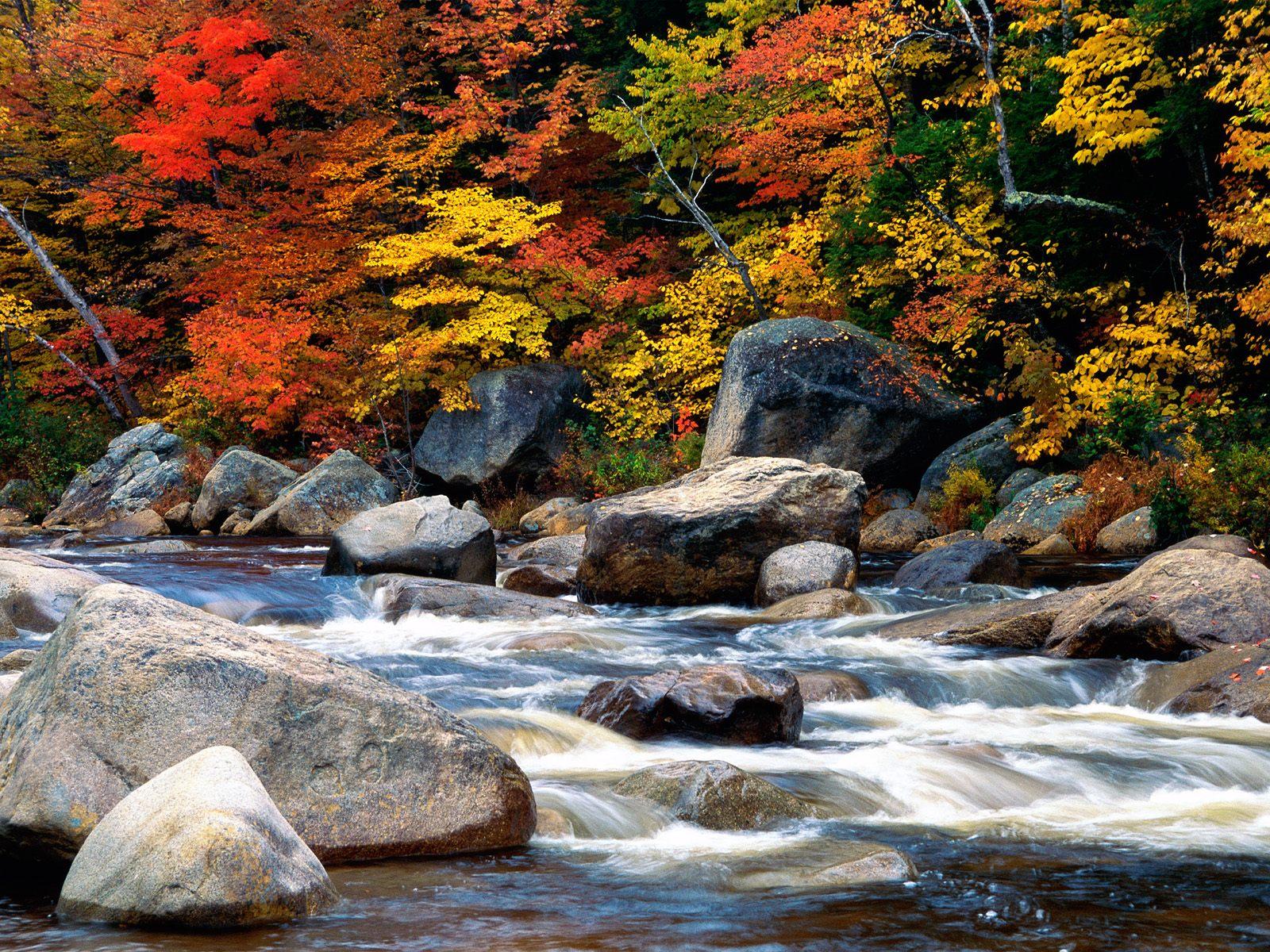 Dağdaki Nehir