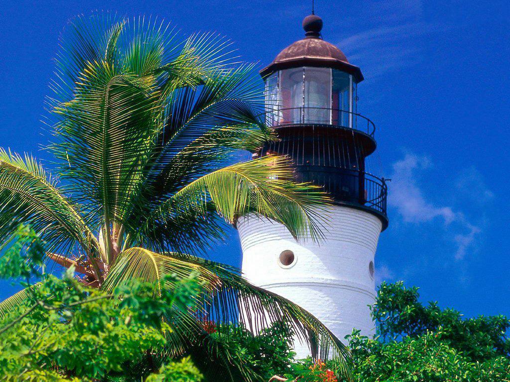 Palmiyeli deniz feneri