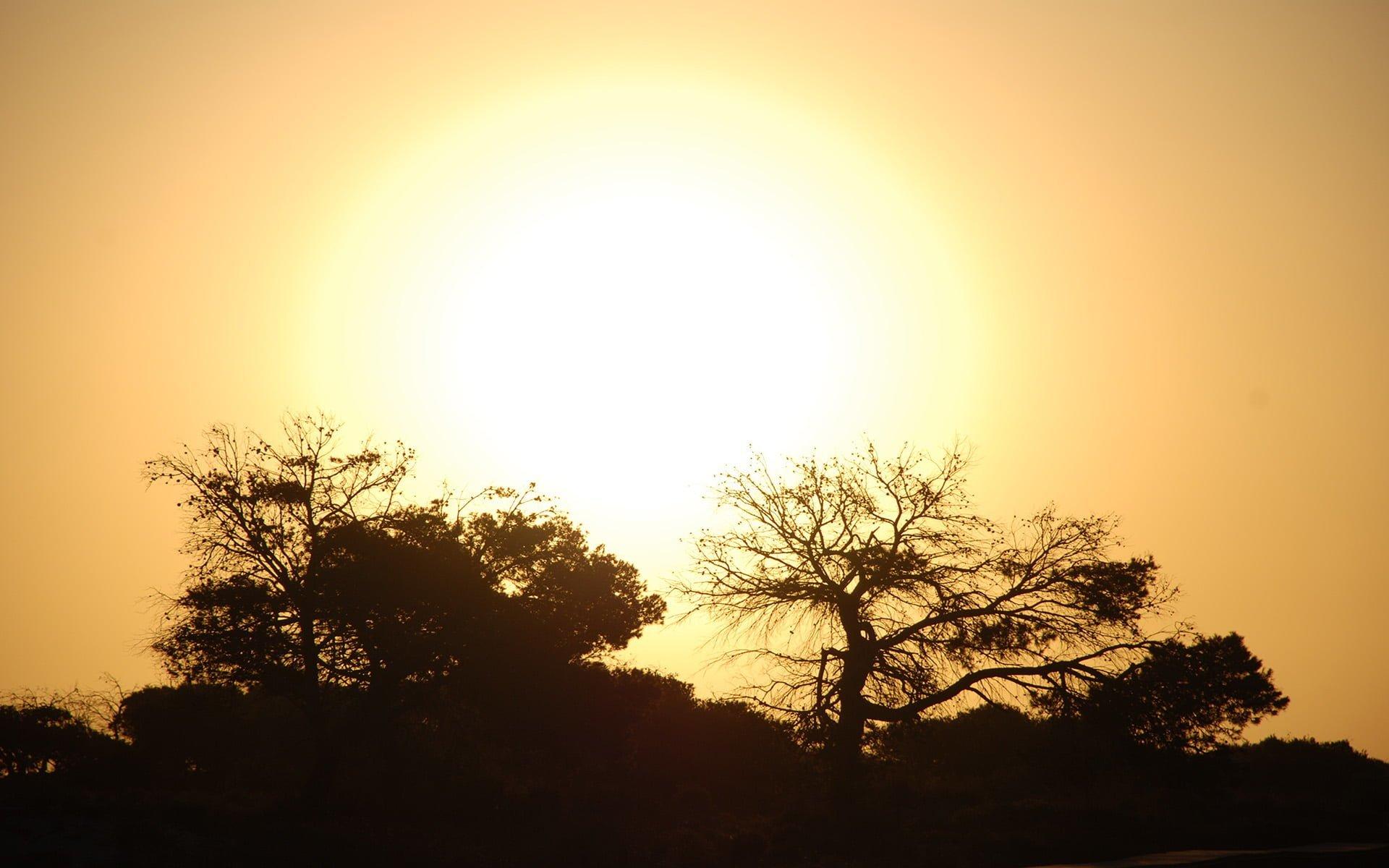 murcia güneş