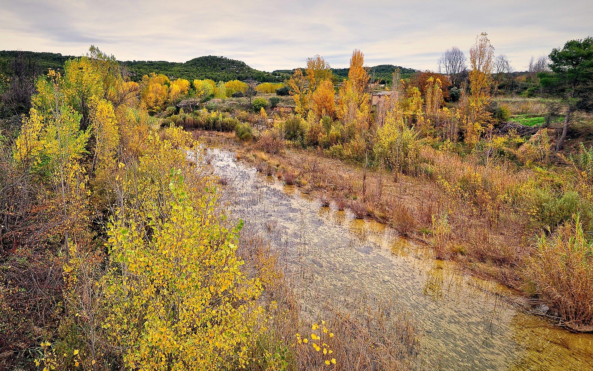 nehir ve sonbahar