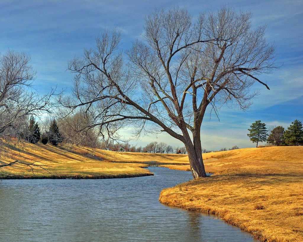oklahoma meadow gölü